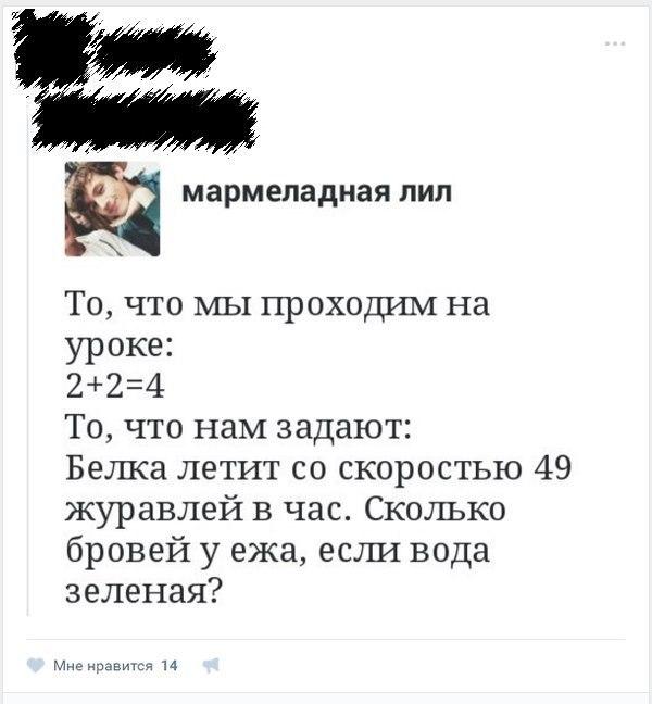 На любой задачу всегда можно найти ответ. школа, задача, не задача, бред, стырено из сети, ВКонтакте, длиннопост