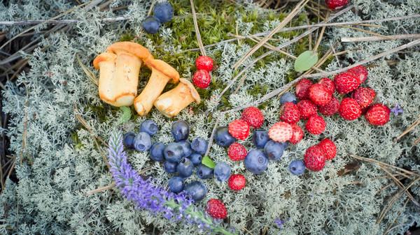 Вкус лета черника, земляника, лето, ягода, за ягодами, вкусно, длиннопост