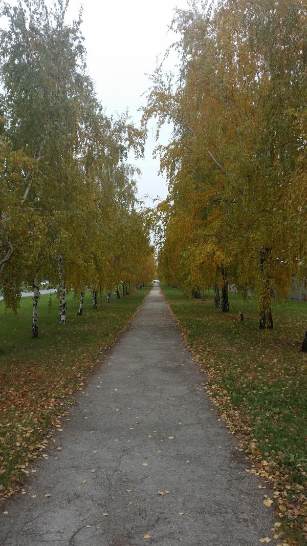 Тольятти Тольятти, париж, эйфелева башня, осень, длиннопост