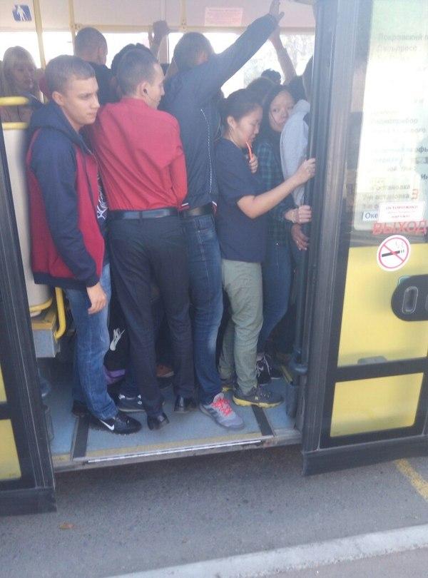 Ситуация с автобусами во Владивостоке Владивосток, Автобус, Кампус, Длиннопост, Политика