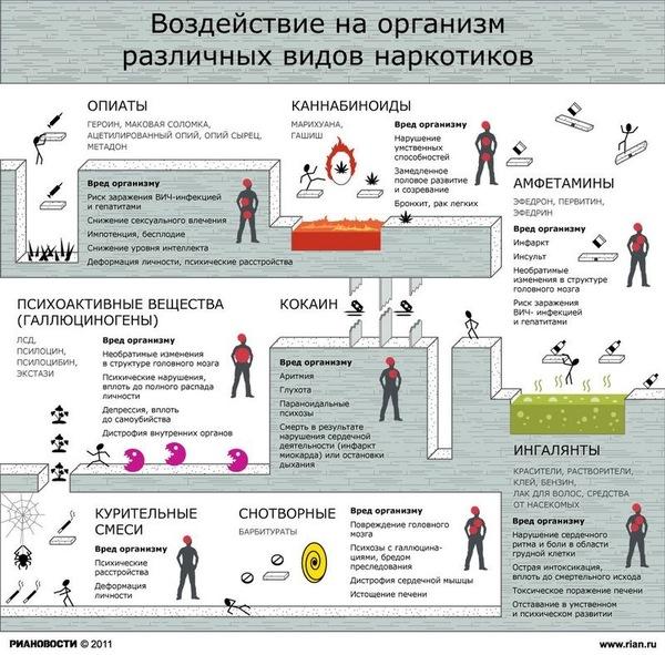Воздействие различных видов наркотиков на организм