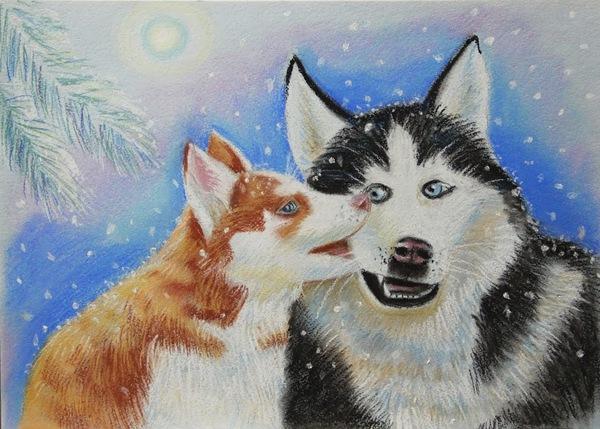 Небольшой кусь от Хаски Собака, Картина, Зима, Кусь, Упоротость