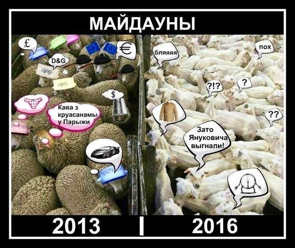 Итоги революции гыдности в картинке... майдан, Украина, бараны, не мое, Политика