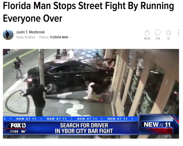 Красава Флорида, США, драка, авто