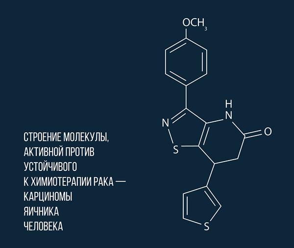 Российские химики открыли молекулу, уничтожающую неуязвимый рак События, Здоровье, Наука, РАН, Рак, Химиотерапия, Молекула, РИА Новости, Длиннопост