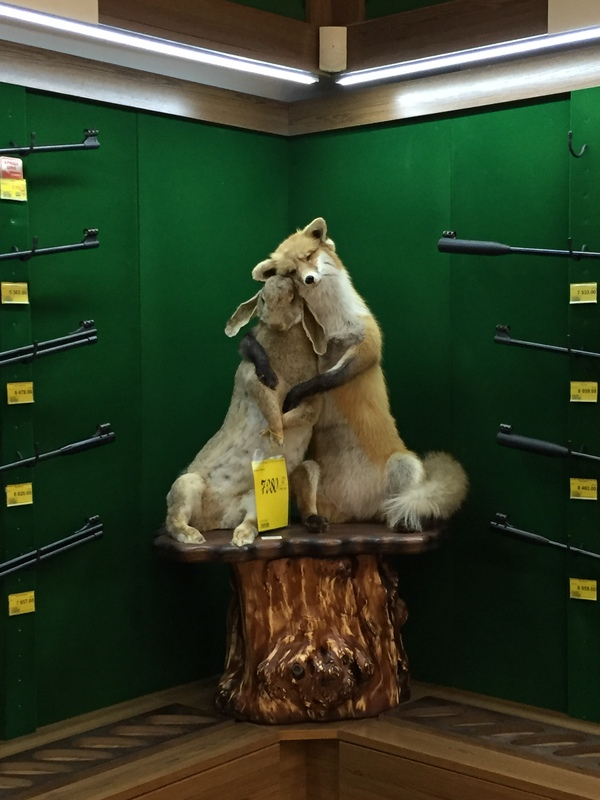 В одном из оружейных магазинов лиса, таксидермия, длиннопост