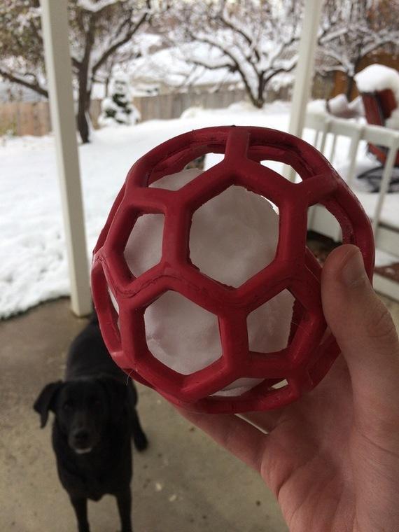 Когда это просто собачья игрушка, но ты видишь фуллерен (С60)