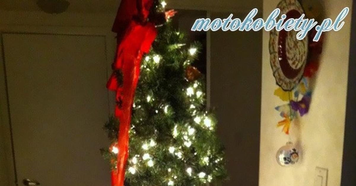 Жопа в елках
