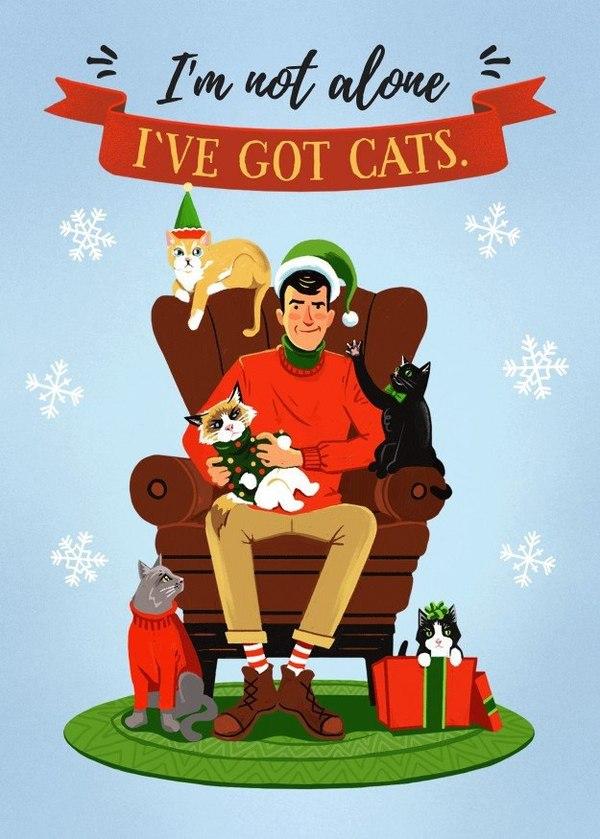 Я не одинок! У меня есть котики!