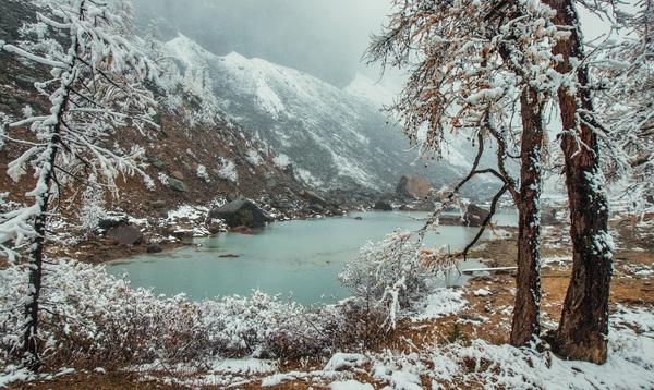 Долина Актру (Алтай) Актру, Алтай, Природа, Природа России, Длиннопост