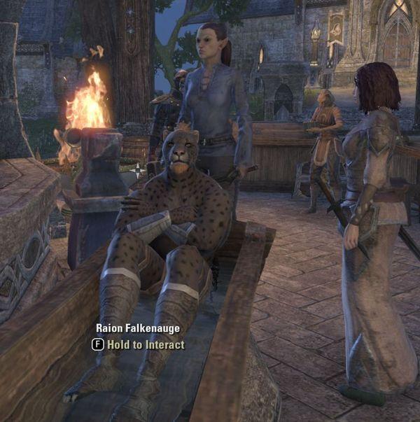 Обычная жизнь каджитов. The Elder Scrolls, Хаджит, обычная жизнь, онлайн