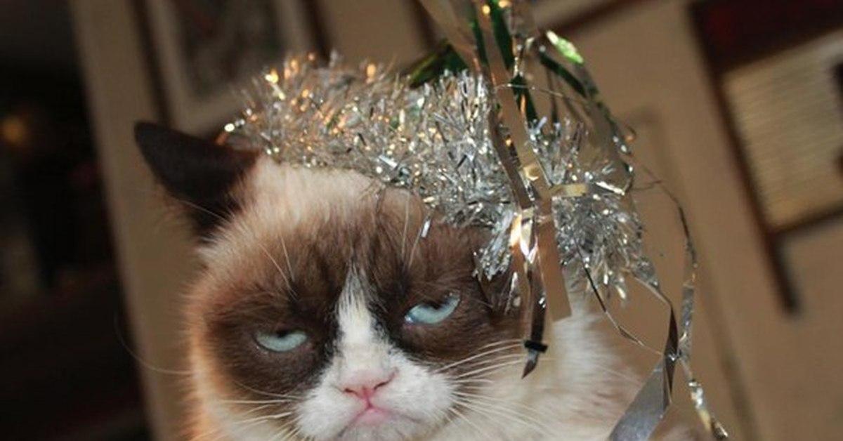 Мне картинки, картинки утро нового года смешные