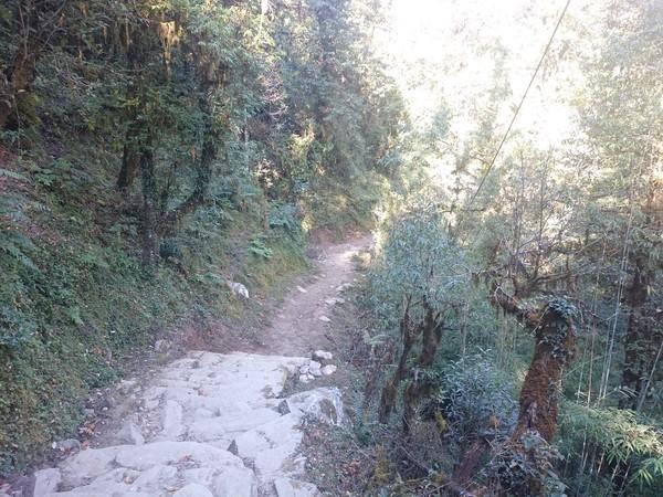 С рюкзаком по миру. День 111-112. Непал. Второй и третий день трека, снежные пики, местный самогон и морозный рассвет. СРюкзакомПоМиру, Путешествия, Длиннопост, Азия, Непал, Гималаи, Интересное