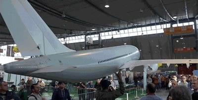Модель самолёта 5 метров в длину и весит всего пол килограмма