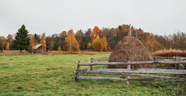 Кенозерье Кенозерье, Архангельская область, Кенозерский национальный парк, осень, пейзаж, Фото, Природа, Россия, длиннопост