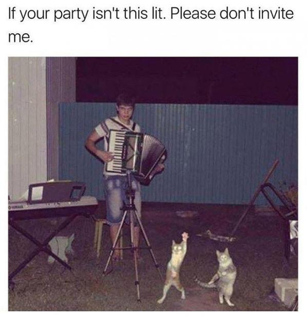 Если ваша вечеринка, как минимум, не похожа на нечто подобное, пожалуйста, даже не пытайтесь меня приглашать.
