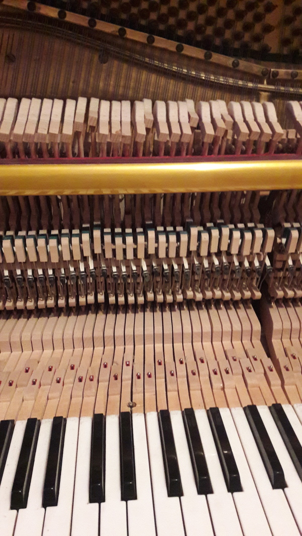 Ув. Пикабушники, не откидываются назад молоточки на фортепиано, что можно сделать? Фортепиано, Настройка рояля