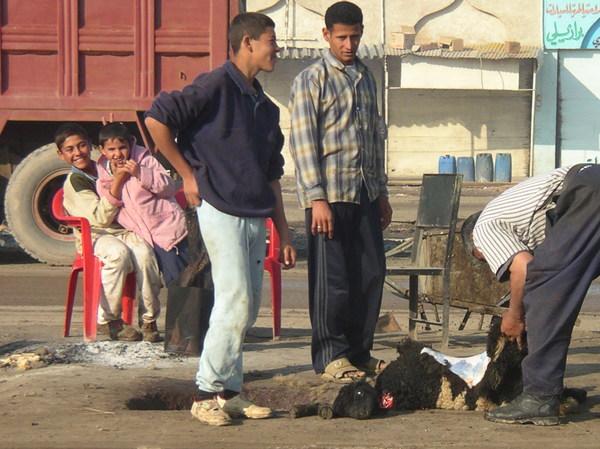 Фотки из Ирака, 2004 г. Выпуск №1 Фото, Ирак, Солдаты, Война, 2004 год, Длиннопост