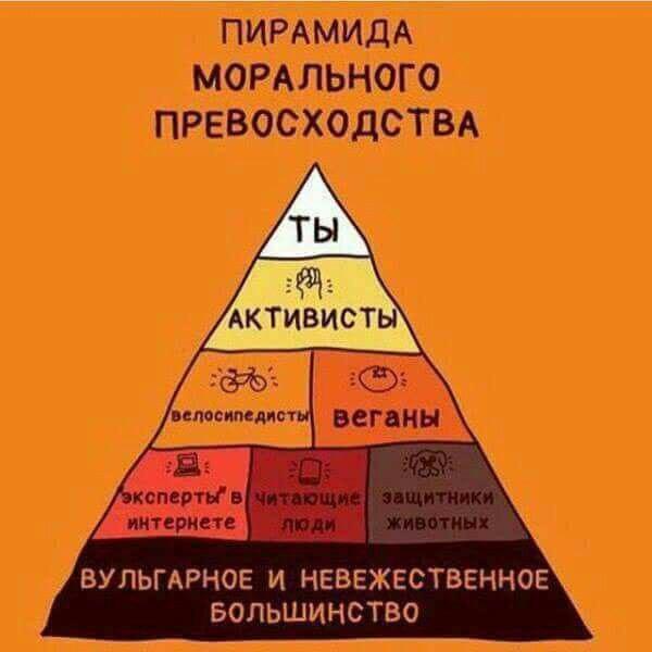 Дешевый качественный хостинг для пирамиды создание веб сайтов подробнее