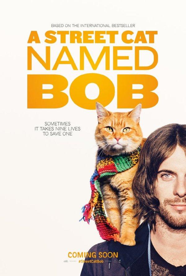 Советую посмотреть: Уличный кот по кличке Боб Советую посмотреть, Кот, Уличный кот по кличке Боб, Драма, Биография