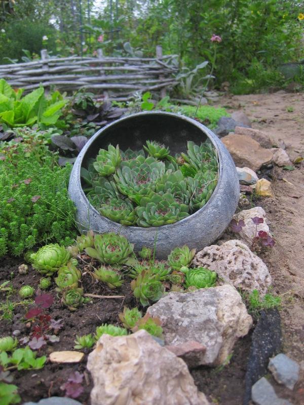 Садовые кашпо из бросовых предметов. Садовые, Кашпо, Длиннопост