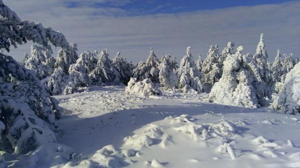 Саратов (Кумысная поляна) Зима, Саратов
