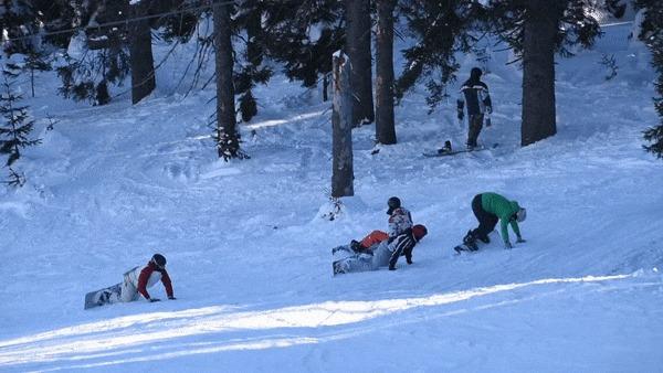 Миграция личинок сноубордистов