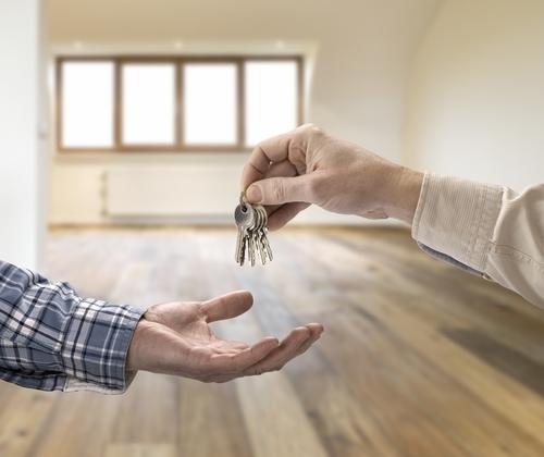 Что нужно делать и что нужно проверять при покупке квартиры. Квартира, Покупка, Совет, Кот, Длиннопост