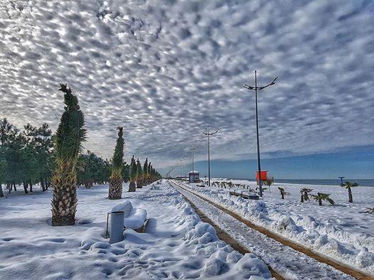 Image result for Зима в Батуми   фото