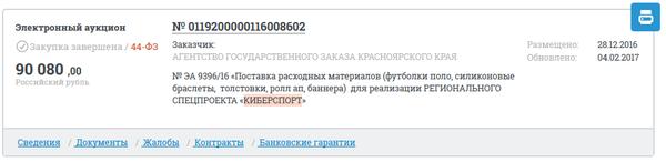 Киберспорт в Красноярском крае 44ФЗ, киберспорт, закупки, госзакупки