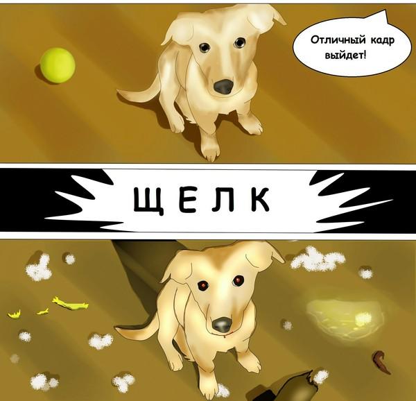 Когда у тебя гиперактивная собака-разрушитель Собака, Комиксы, Домашние животные