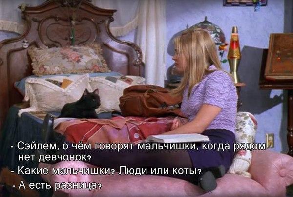 А есть разница? Кот, Раскадровка, Сериалы, Сабрина маленькая ведьма, Животные, Люди