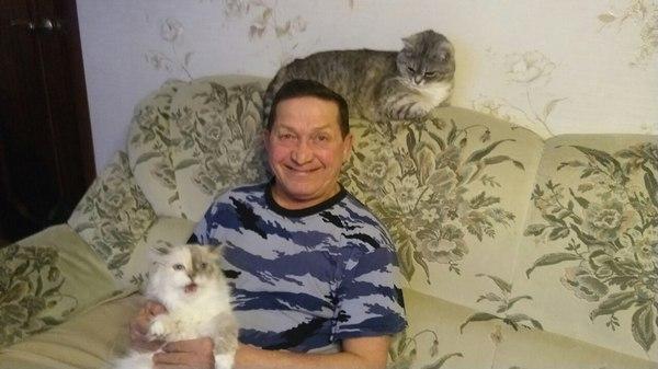 Уже 3 месяца в командировке, попросил сфоткать котофеев... Ну и батя (впервые за 9 лет) взял кошку на руки.