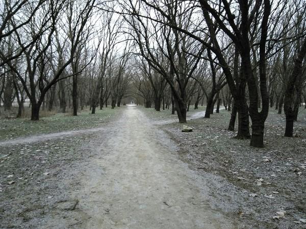 14 февраля. На улице началась осень