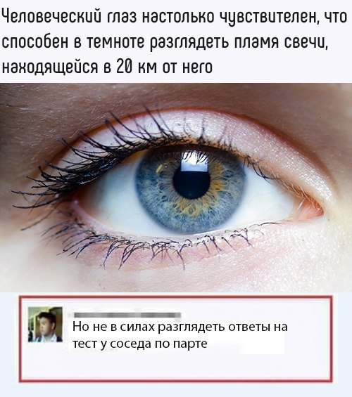 Парадокс зрения Зрение, Парадокс, Школа, Списывание, Жизненно
