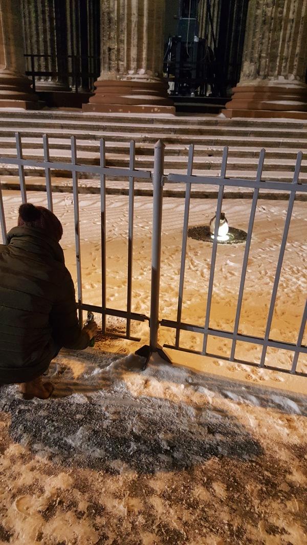 Милосердия пост Кот, РПЦ, Бездомный кот, Длиннопост