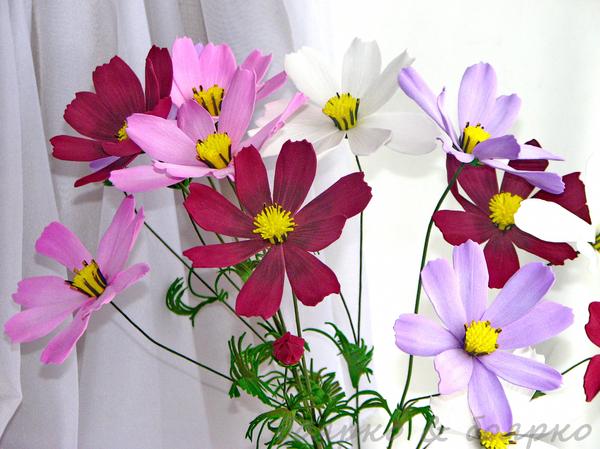 Цветы из моего детства Дети, Детство, Космея, Цветы, Своими руками, Фоамиран, Цветы из фоамирана, Длиннопост