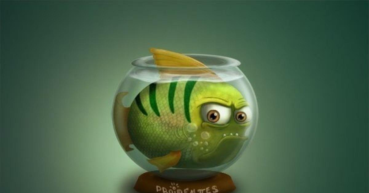 отличие смешные картинки про аквариумы солдаты зашли освенцим