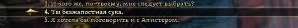 Еще один термин в копилку Dragon Age: Origins, Dragon age, термины, диалог, скриншот