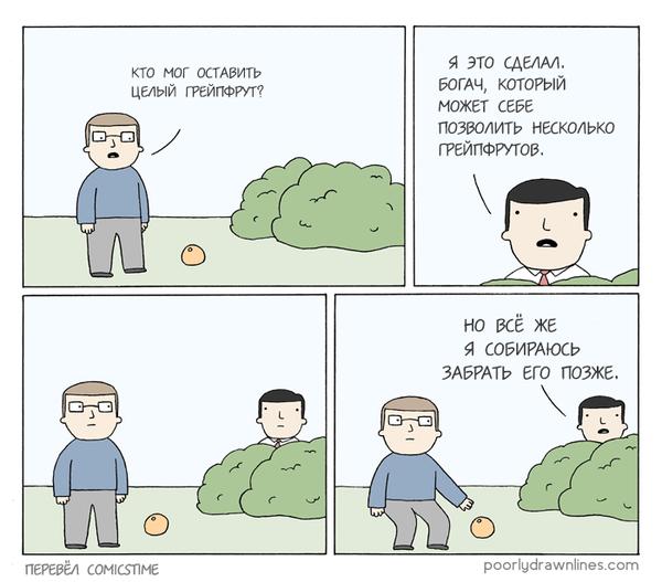 История одного грейпфрута