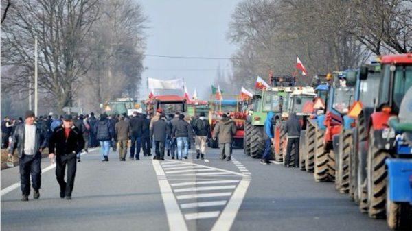 Kубанские фермеры вновь собрались на Москву фермеры, произвол власти, Кубань, трактор, Политики, политика