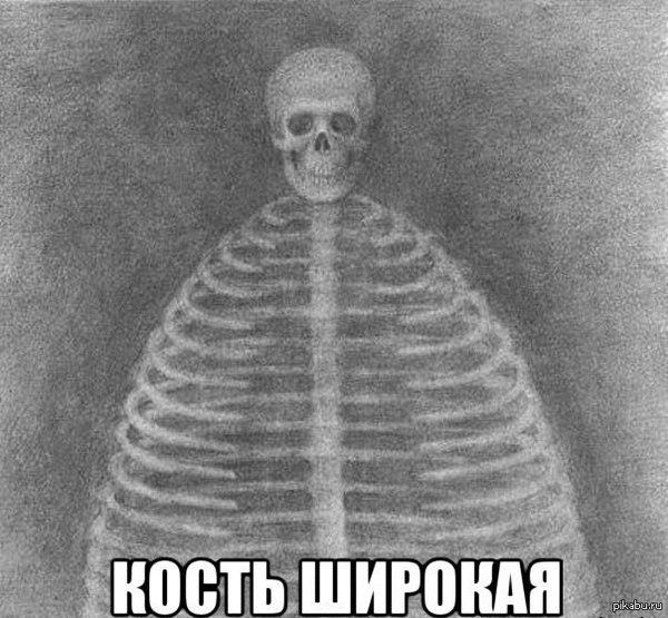 фото кость широкая
