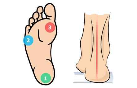 Секреты стопы и голеностопного сустава скачать пяточно кубовидный сустав тип движения