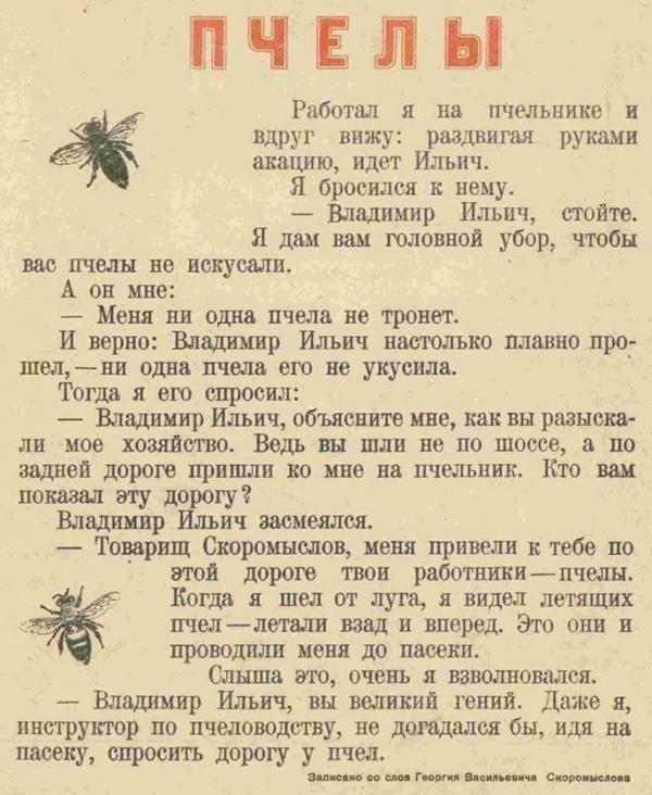 Ильич и пчелы.
