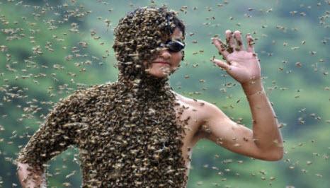 """Ч. 1: """"Всё х*йня кроме пчёл"""", или как найти себе применение. бизнес, свое дело, пчеловодство, Москва, своими руками, пчелы, длиннопост"""