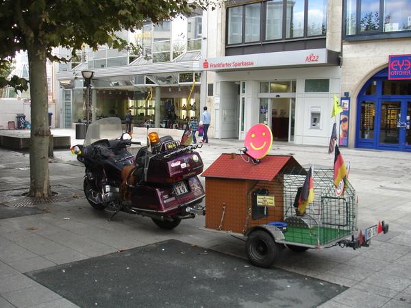 А как вы перевозите своих питомцев? мотоциклы, питомец, путешествия