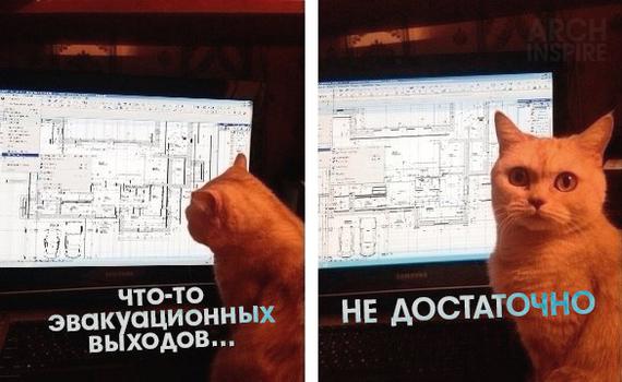 Чек-лист от котана. Часть 1 архитектура, архитектор, кот, мемы, проектирование, критика, проектировщик, длиннопост
