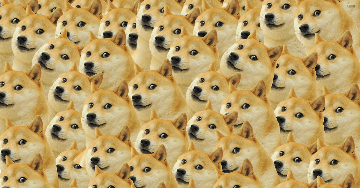 собрали фото собак на ютуб марвел скачать