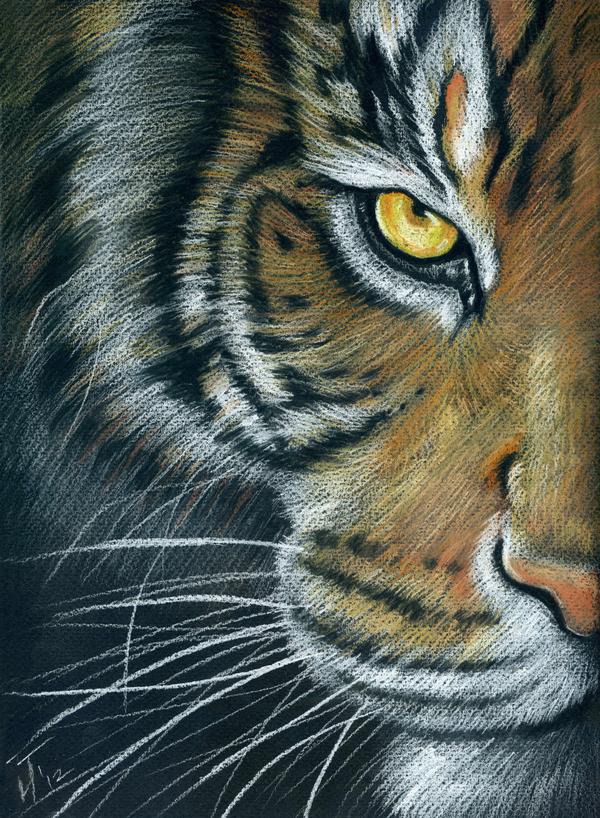 Моя графика Рисунок, Графика, Пастель, Большие кошки, Длиннопост