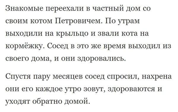 Кот Петрович.